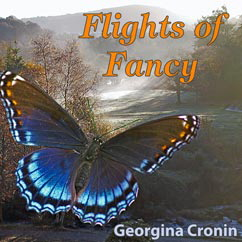 "Cover of ""Flights of Fancy"""
