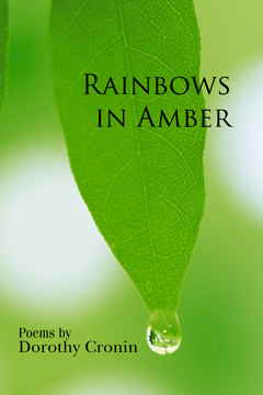 Cover - Rainbows in Amber